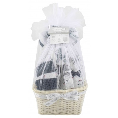 Baby Gift Basket 6 pieces